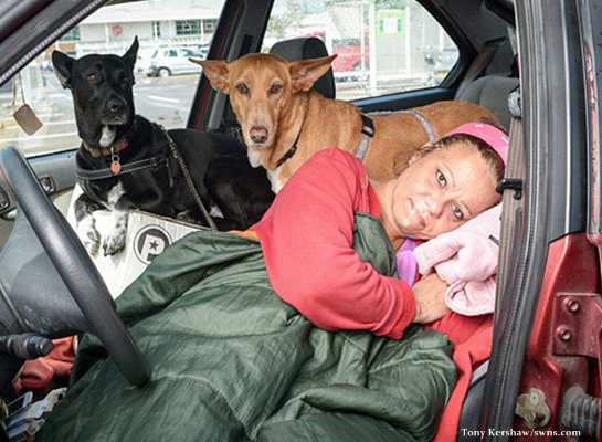 When Hillary Barrows found herself homeless, she applied for emergency housing from the council, only to be told that she could have a house, but would have to part with her pet dogs, Robbie and Cleo, in order to get it.